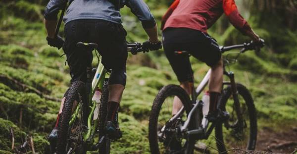 best-online-bike-store-reddit-5dd1f4186bdd9