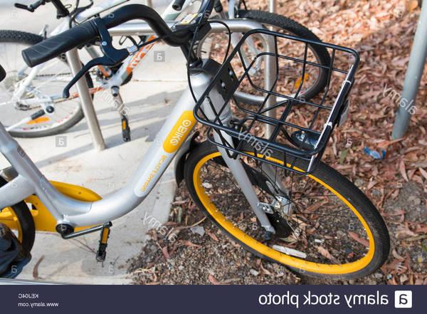 bike-gps-tracker-online-india-5dd2aaa493c50